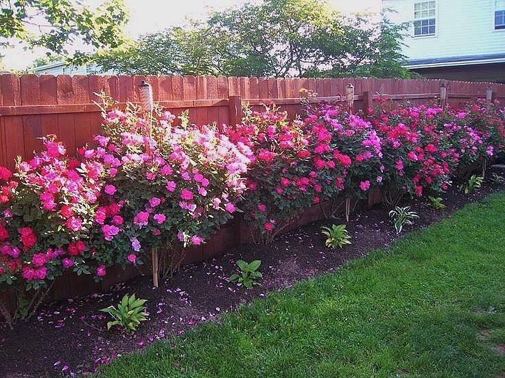 garden bed fence raised garden bed fence ideas raised bed garden fence  amazing ideas raised garden