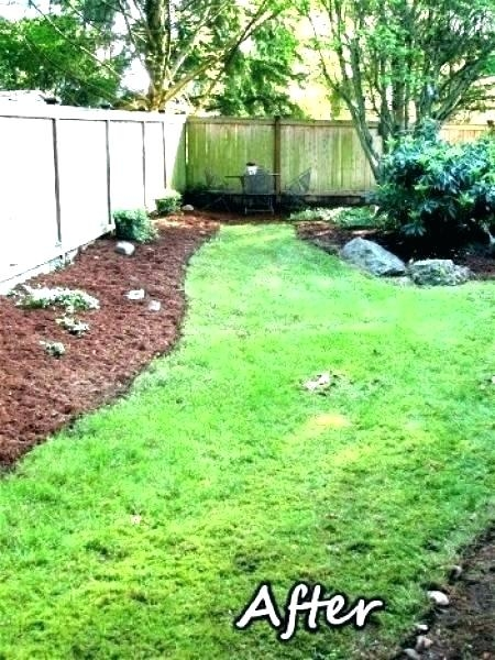 raised garden bed animal barrier gardens plans new stock beds vegetables  with deer fence ideas instructions