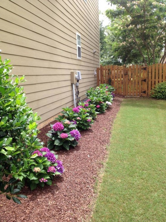 Not just gardening ideas, but other easy home improvement projects