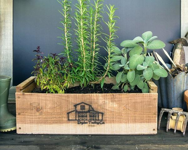 Garden Ideas: 'Дом в стиле кантри' идеи для сада